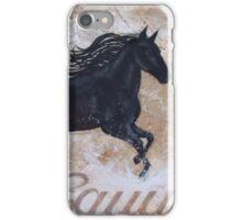 Water Dance iPhone Case/Skin