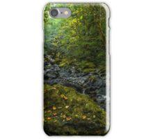 Brice Creek #56 iPhone Case/Skin
