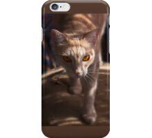 Raymond Shadow Seeker - iPhone case iPhone Case/Skin