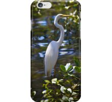 Great Egret  - iPhone case iPhone Case/Skin