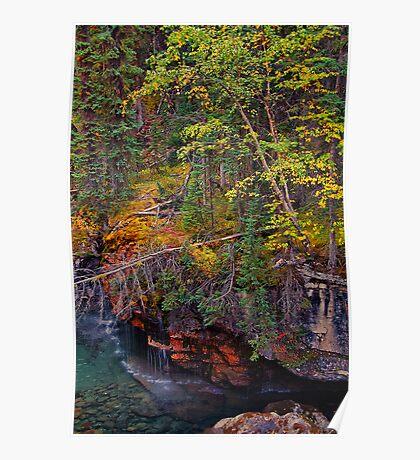 Canada. Canadian Rockies. Jasper NP. Maligne Canyon. Fall Colors. Poster