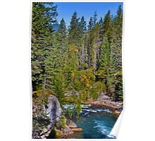 Canada. Canadian Rockies. Jasper National Park. Maligne Canyon. Poster