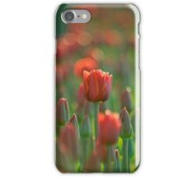 A Morning At The Field iPhone case.  iPhone Case/Skin