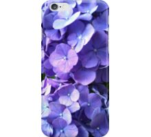 Blue Hydrangea iPhone Case iPhone Case/Skin