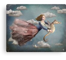 Voyage in the sky Metal Print