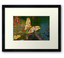 Air Dancers Framed Print