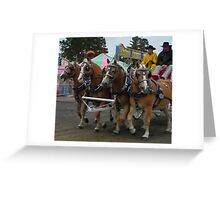 Belgian Draft Horses Greeting Card
