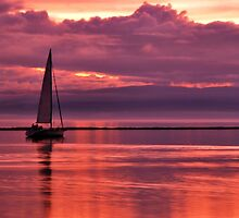 Sunset Cruise by Joanne  Bradley