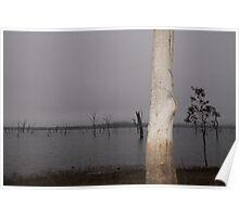 illumination, Tinaroo Dam. FNQ. Poster