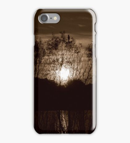 Farewell To The Day iPhone Case iPhone Case/Skin