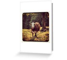 Bovine Days Greeting Card