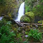 Wahclella Falls II by AdventureGuy