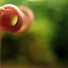 Beautiful Blur by cjohansson