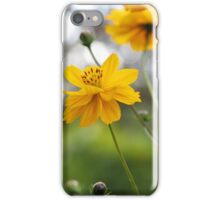 April Sun iPhone Case/Skin