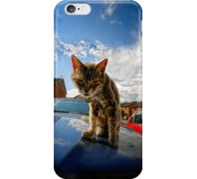 Iphone Cover Cat iPhone Case/Skin