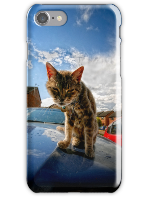 Iphone Cover Cat by Simon Duckworth