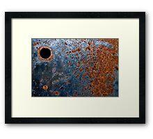 245/365 Framed Print