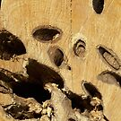 Wood texture pattern  by anjafreak