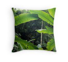 Thailand, banana trees (Musa sp.) in jungle Throw Pillow