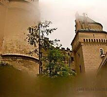 Bojnice castle I - Slovakia  by MarekM