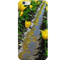 Rows Of Color iPhone case. iPhone Case/Skin