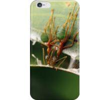 greenants iphone case iPhone Case/Skin