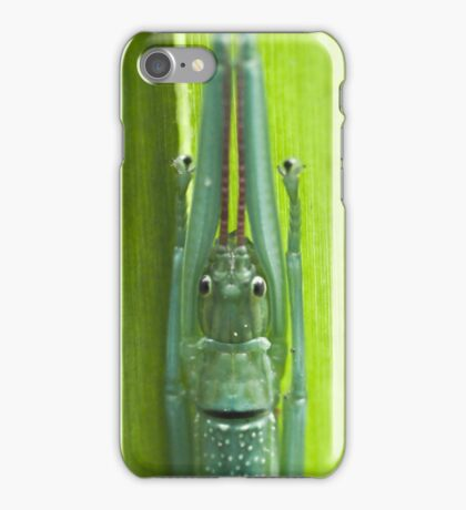 Stick Insect iPhone Case/Skin