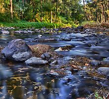 Tallebudgera Creek by Jayde Aleman