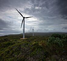 Wind Farm - Albany Western Australia by Chris Paddick