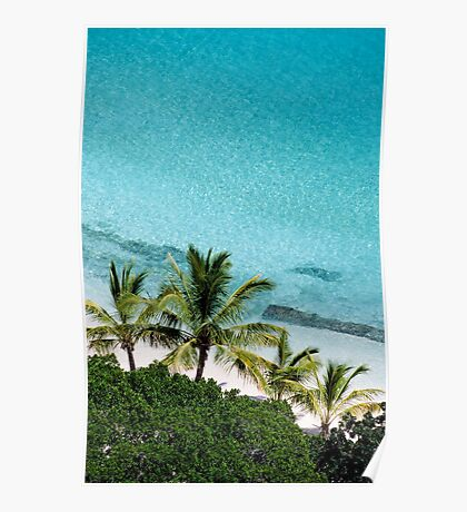 Palm Trees Against Cristal Blue Water Poster
