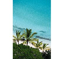 Palm Trees Against Cristal Blue Water Photographic Print