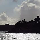 St Mawes and Pendennis Castles by wiggyofipswich