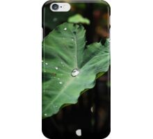 Leaf - iPhone Cover iPhone Case/Skin