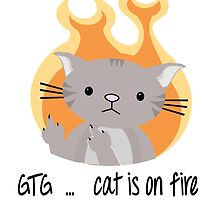 Nerd cat on fire by Jellyscuds