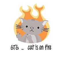 Nerd cat on fire Photographic Print