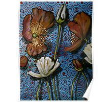Mixed Poppies on Blue Poster