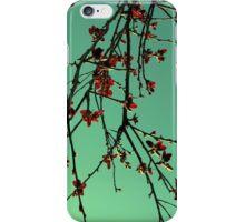 Oriental iPhone Case/Skin