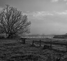 Old farm by a foggy river by Jayde Aleman