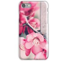 A delicate Spring - iPhone case iPhone Case/Skin