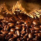 The smell of coffee beans by Jérôme Le Dorze
