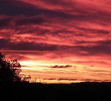 Sunrise Over Falkirk by Dawn (Paris) Gillies