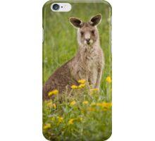 kangaroo iPhone cover iPhone Case/Skin