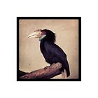 Exotic Bird of KL by OTB Homewares & Accessories