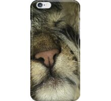 Tabby Cat Phone Case Cover iPhone Case/Skin