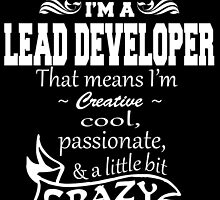 I'M A LEAD DEVELOPER THAT MEANS I'M  CREATIVE.. by fancytees