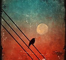 Moon Talk by Tara  Turner