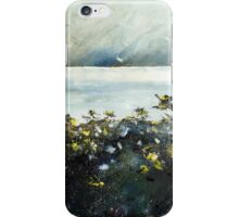 over the hedge iphone cover iPhone Case/Skin