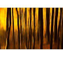 Golden Blur Photographic Print