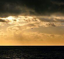 Between sea and sky by emajgen