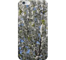WHITE BLOSSOM iPhone Case/Skin